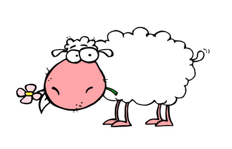 Quante pecore vanno a Montevecchia?