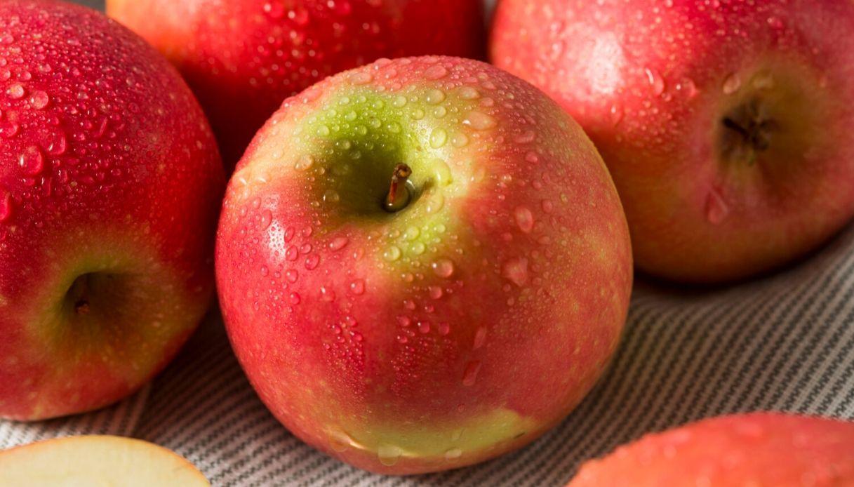 Sibillini in Rosa: Montedinove, tra i profumi dell'antica mela di montagna