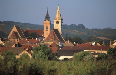 In Burgenland tra sapori e vigneti, alle porte dell'autunno