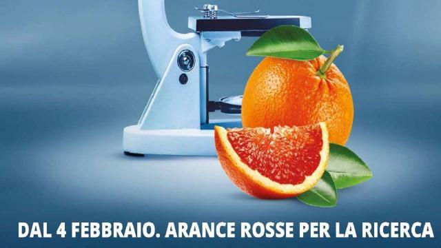 Fondazione Airc, Gruppo Gabrielli sostiene iniziativa ''Le Arance della Salute''