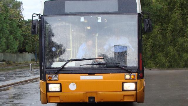 Regione Marche, videconferenza con aziende trasporto pubblico locale su gomma