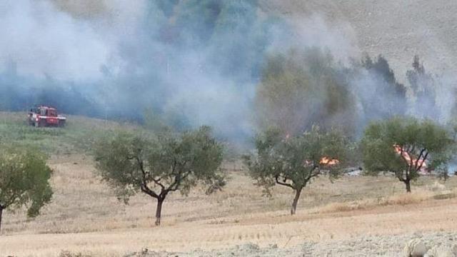 Appignano del Tronto, Vigili del Fuoco al lavoro per incendio di un campo agricolo