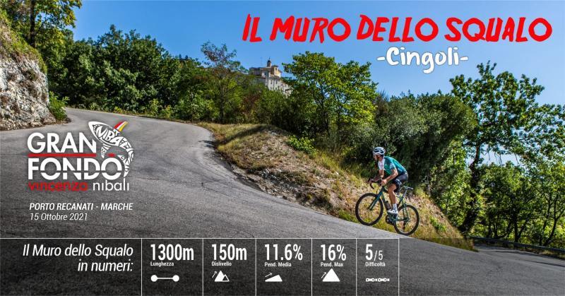 Ciclismo: Granfondo Nibali-5 Mila Marche, lo Squalo è arrivato a Porto Recanati