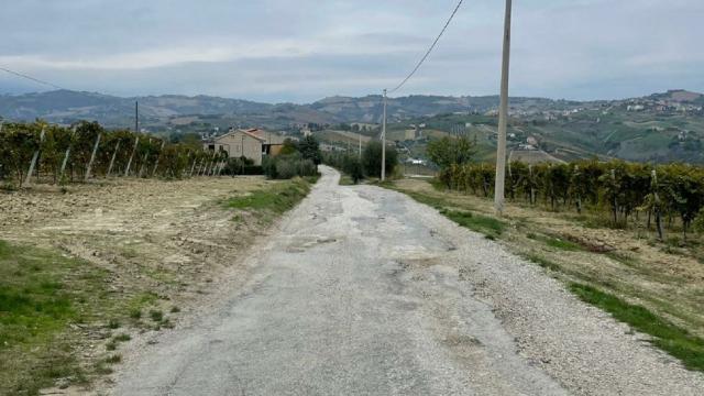 Offida, iniziati lavori di sistemazione della strada comunale Grifola