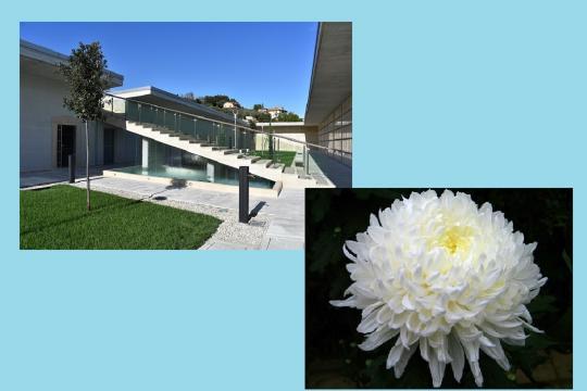 Monteprandone: Ognissanti e commemorazione dei defunti, misure anti-contagio al cimitero