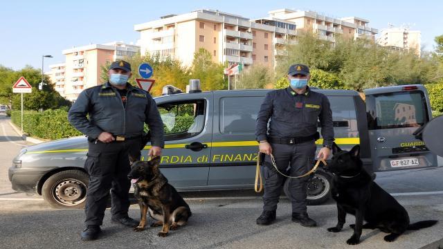 Guardia di Finanza Fermo, contrasto al traffico di sostanze stupefacenti con impiego unità cinofile
