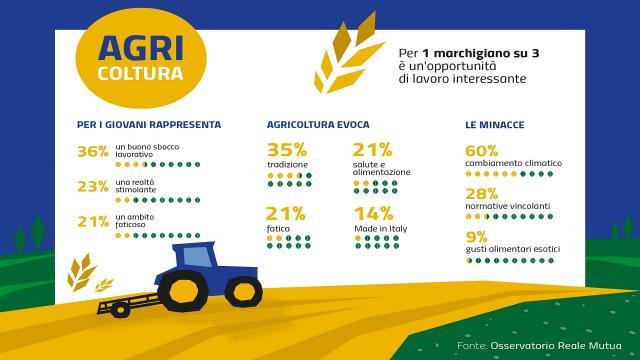 Agricoltura, per 1 marchigiano su 3 è una buona opportunità di lavoro